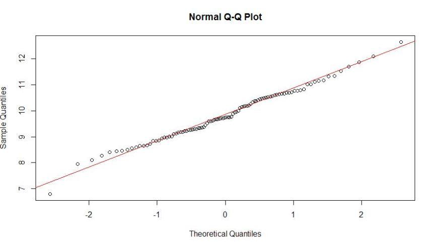 Q-Q Plot (Normal)